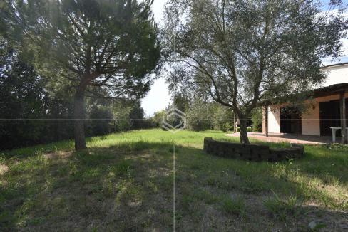 vendita villa con giardino- La Vettola- Pisa_5